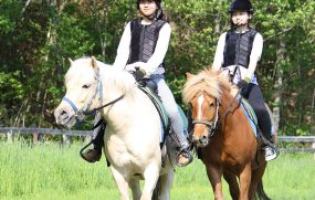 Noboribetsu Horse Park Yu-shun